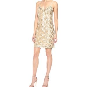 Trina Turk Women's Gilded Flower Mesh Dress